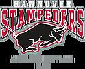 Hannover stampeders helm